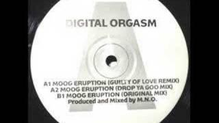 Digital Orgasm - Moog Eruption (Guilty of love remix)
