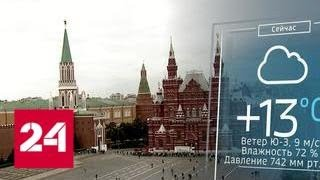 МЧС предупреждает о сильном ветре в Москве   Россия 24