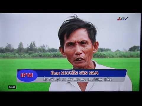 Integrated Pest Management in Viet Nam 02