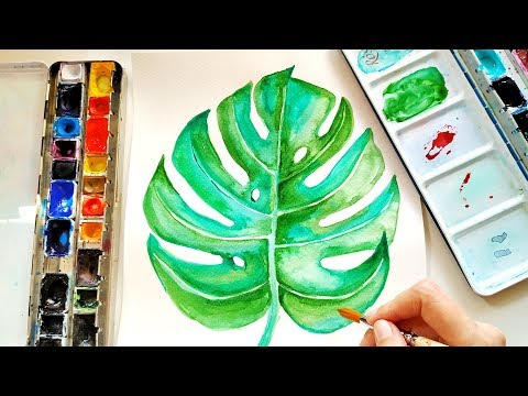 How To Paint Monstera Leaf - Watercolor Botanical Illustration For Beginners \ ASMR Painting