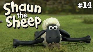 Shaun the Sheep - Shaun Mencuri Apel Scrumping