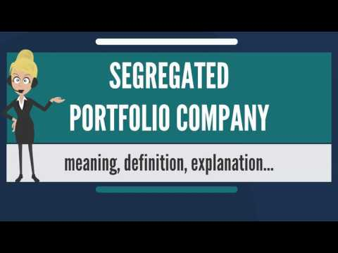 What is SEGREGATED PORTFOLIO COMPANY? What does SEGREGATED PORTFOLIO COMPANY mean?