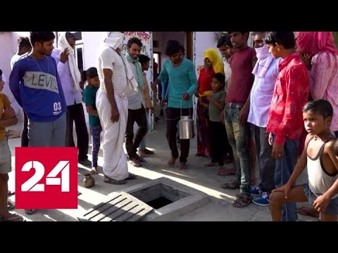 В Индии страшная жара и нашествие саранчи - Россия 24