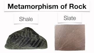 Metamorphic Rocks-Hommocks Earth  Science Department