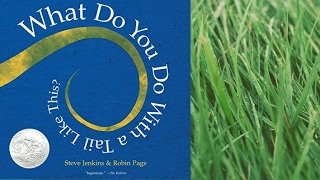 What Do You Do With a Tail Like This? by Steve Jenkins & Robin Page