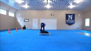 Indy (doberman) Boot Camp Dog Training Video