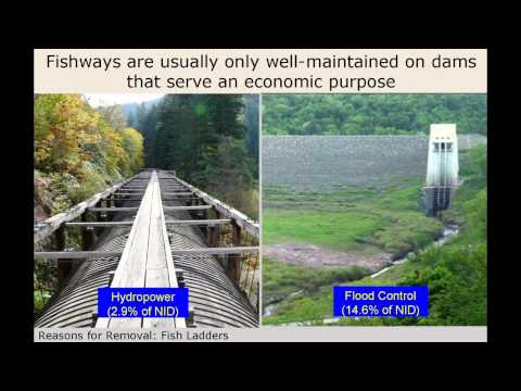 Dam Removal Project Management: Dam Removal 101, Part 1 of 2