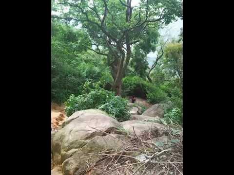 velliangiri malai payanam (so groups)09-2014
