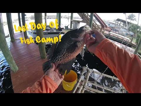 Crappie Last Day Of Fish Camp