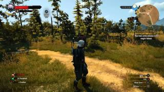 The Witcher 3 on Ultra Settings with 4K Dynamic Super Resolution GSYNC Test