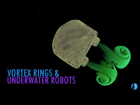 Vortex Rings, Salps, and Underwater Robots