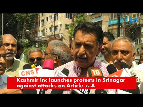 Kashmir Inc launches protests in Srinagar against attacks on Article 35-A