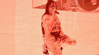 Billie Eilish, Watch & Burn (live), San Francisco, May 29, 2019 (4K)