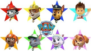 PAW PATROL Educational   Videos for Children Compilation