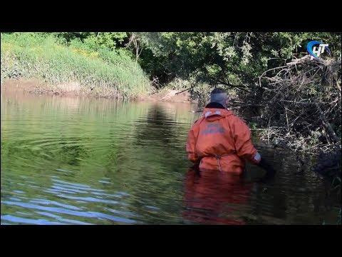 Трагедией закончилось купание для троих жителей Новгородской области