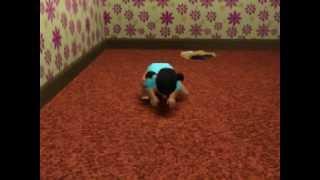 sims 3 kid acting like toddler