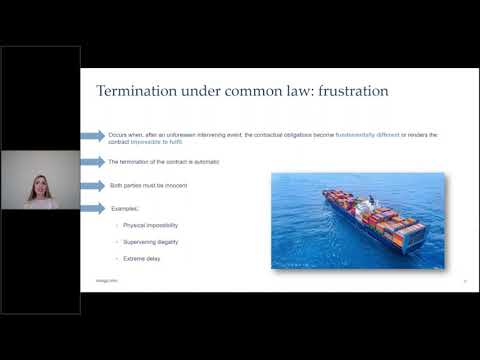 Ince tackles terminations of contracts in maritime industry