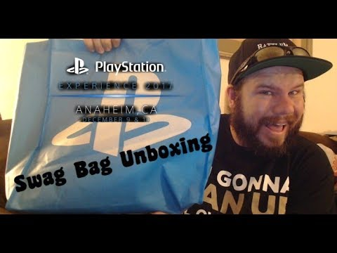 Unboxing Playstation Experience 2017 Swag Bag