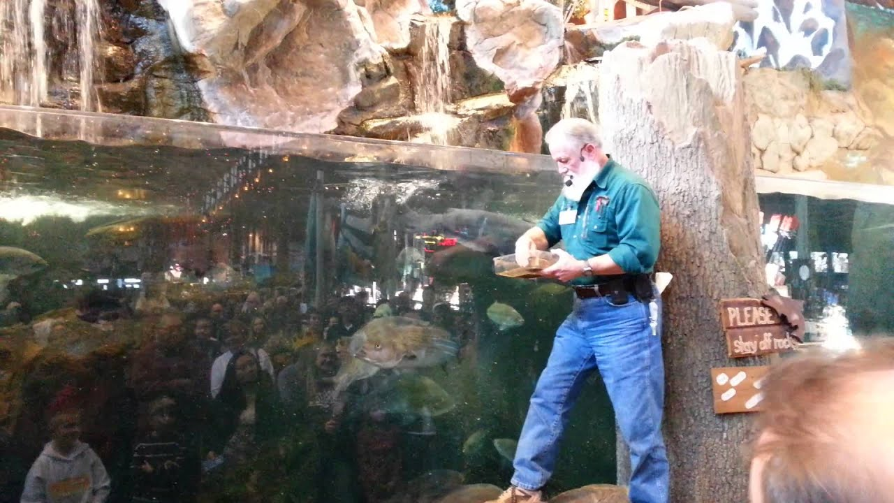 Bass pro shops feeding the fish youtube for Bass pro shop fishing license