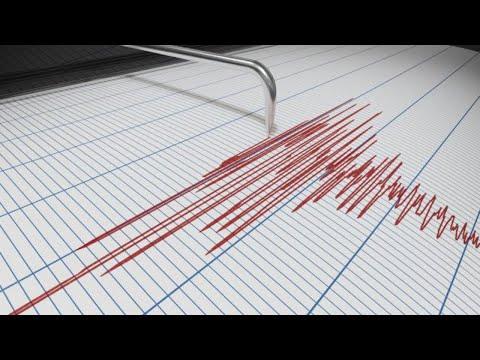 Live Earthquake Viewer.... Worldwide Seismographs.. Earthquake Chat!