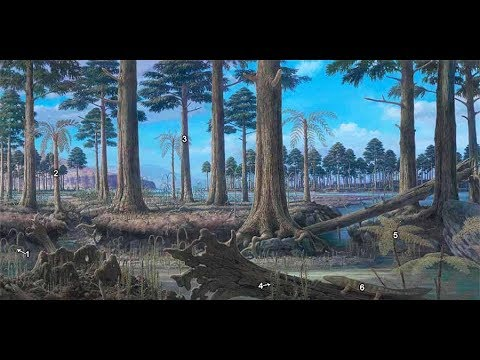 Devonian Period To Cretaceous And Ice Age