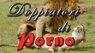 DOPPIATORI DI PORNO #02