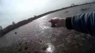 Ловля карася на резинку весной. Ловля карася. Закидушка. Рыбалка. Fishing.(Ловля небольшого карасика на резинку весной. Снасть резинка:https://youtu.be/LJKDG2_hmKk Партнерская программа AIR: http://joi..., 2015-04-17T22:50:26.000Z)