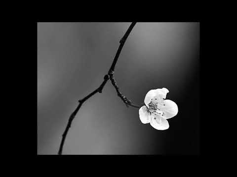 Alfred Schnittke - Requiem Aeternam - Swedish radio choir