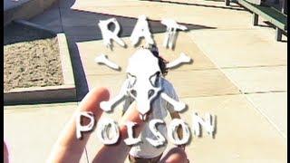 Rat Poison Shane Auckland Teaser