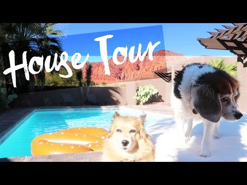 I Bought My Dogs A House! (House Tour)