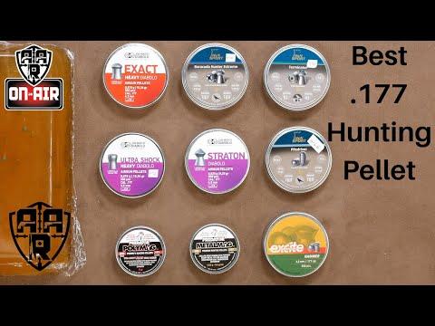 Best 177 Hunting Pellet