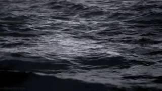 Lemongrass Feat Jane Maximova Deep River Ficture Remix