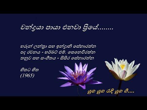 Chandraya Paya Enawa Priye - චන්ද්රයා පායා එනවා ප්රියේ - Haroon Lanthra and Indrani Senarathna
