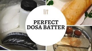 How To Make Dosa & Idli Batter At Home  / Ami