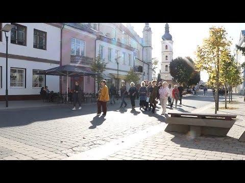 Пинск посетила делегация из города-побратима Альтена