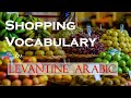 Learn Arabic Conversation at the Grocery Shop - Essential Arabic Phrases (for Beginners)
