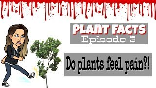 Plant Facts | Episode 3 | Can Plants Feel Pain?