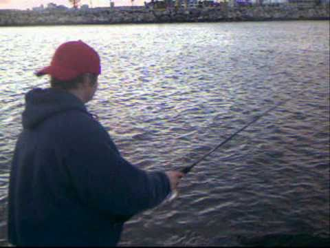 A day of fishing on the seal beach ca jetty youtube for Seal beach fishing