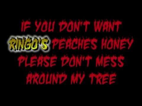 The Beatles Matchbox with Lyrics  RINGO! (Rare) mp3