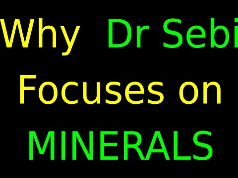 Why DR SEBI Focuses On MINERALS!