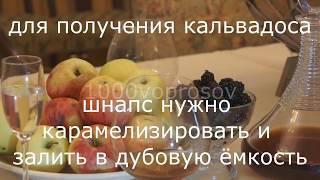 Самогон из яблок? Шнапс. Кальвадос. Реальный рецепт. (вопрос №5)