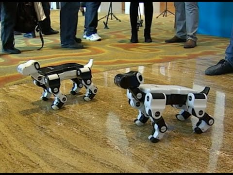 Robot Butterflies, Robot Dogs Uunveiled at Tech Conference in east China