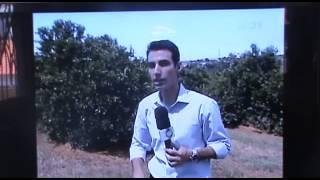 Reportagem Sobre a Suposta Queda de um Meteorito em Uraí