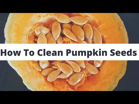 How to clean Pumpkin Seeds | Easy Way To Clean Pumpkin Seeds