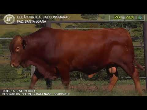 LOTE 016