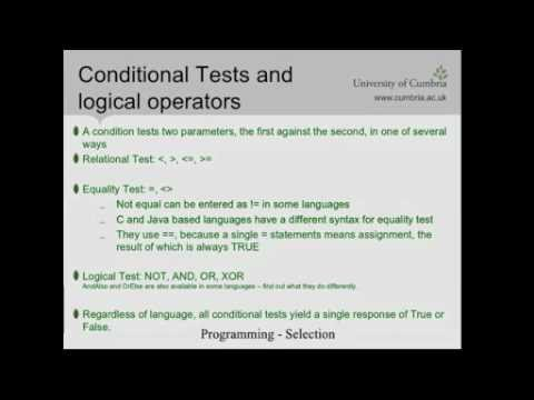 ABMC4007 (Part 4-2) Selection Statements, Conditional Tests and Logical Operators