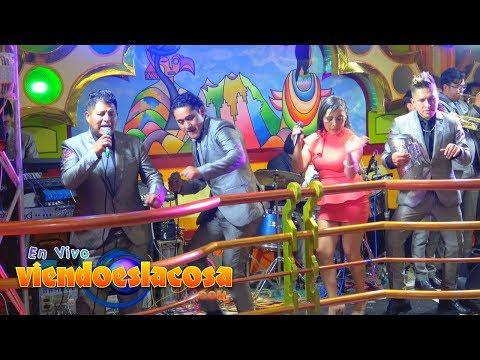 VIDEO: LOS FLAMENCOS MIX (en VIVO)