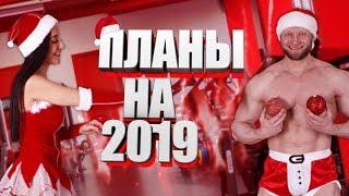 Новогодние приколы 2019 Мои планы на Новый Год