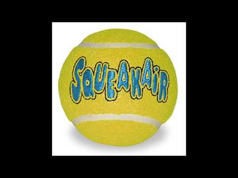KONG Air Dog Squeakair Tennis Balls Dog Toy Medium Yellow 3Pack