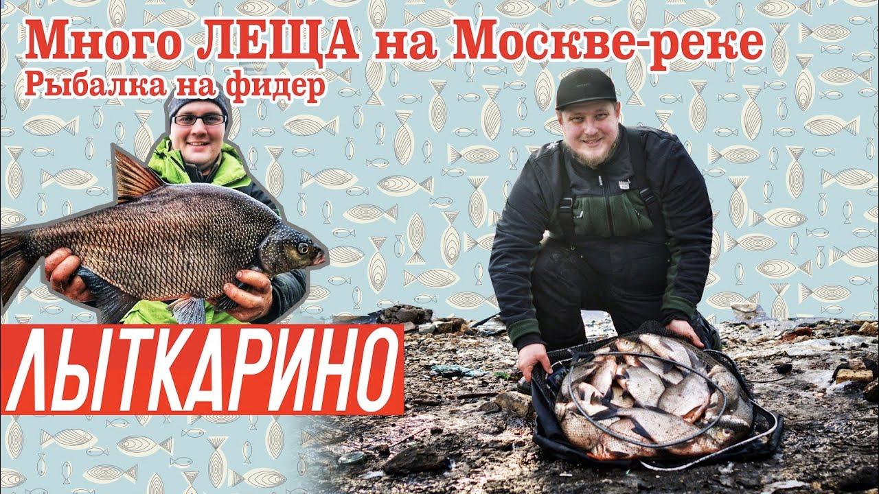 Как поймать МНОГО ЛЕЩА в Москве-реке. Рыбалка на фидер. DONKATV! Лыткарино